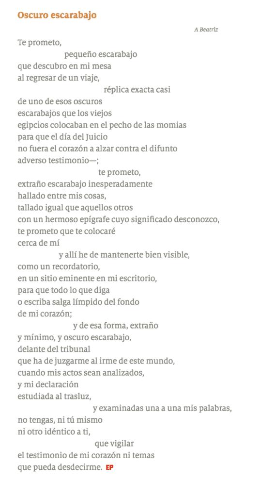Platicamos con el escritor Fernando Fernández sobre su nuevo libro, Oscuro escarabajo, que se publicará a inicios de este mes bajo el sello de Ediciones Monte Carmelo. Les compartimos, además, un poema como adelanto