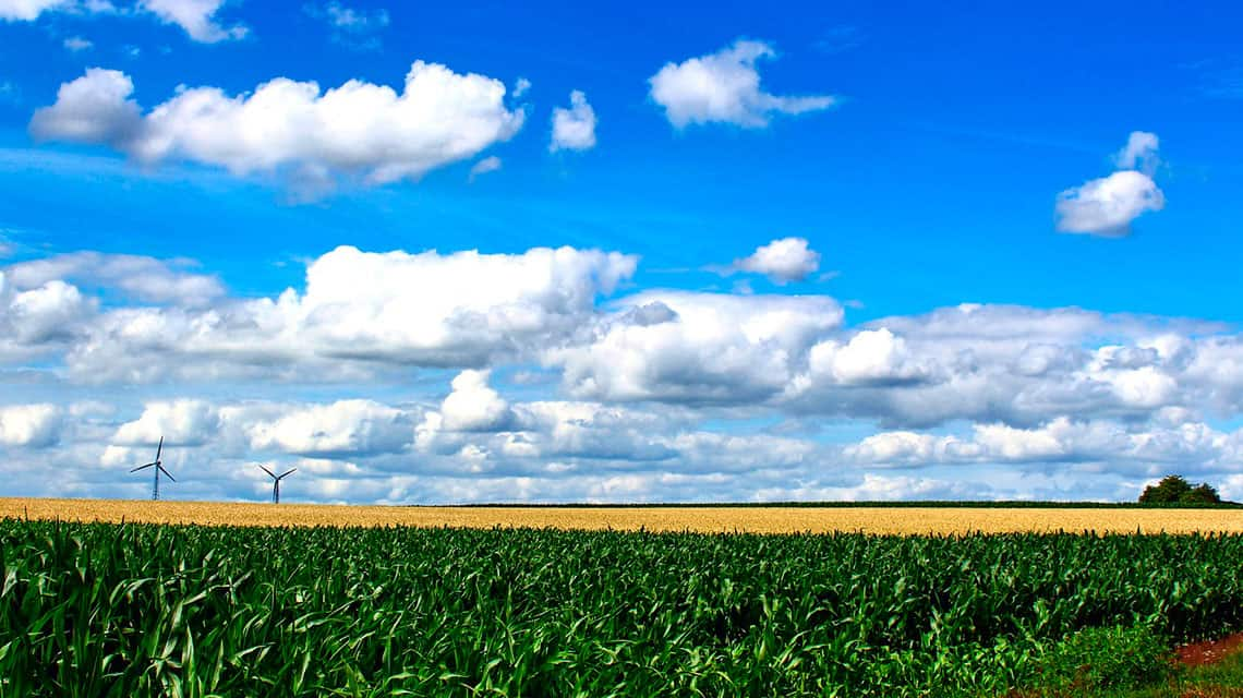 Este-Pais_agricultura-regenerativa